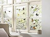 Komar - Window-Sticker CHEERFUL - 31 x 31cm - Fensterdeko, Fenstersticker, Fensterfolie,...