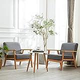 H.J WeDoo 2 x Lounge Sessel Polstersessel Coctailsessel Loungesessel Retro Stuhl mit Massivholz-Struktur für Wohnzimmer Schlafzimmer (Grau)