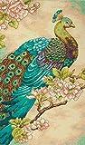 Dimensions Gezählter Kreuzstick Set, Indian Peacock