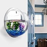 Idylische Blase Schüssel Pflanze Aquarium aus Acryl mit Wandhalterung Blumentopf GartenTerrasse...
