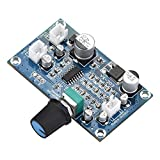 Audioverstärkerplatine,Mikrofon Nachhallplatte Audio Power Amplifier Board Einkanal...