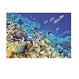 HomeDecTime Einseitig Klebende Poster Aquarium Hintergrund Hintergrund Aquarium Dekor - XL