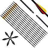 Narchery 12 Stück Pfeile für Bogenschießen, 31 Zoll Carbonpfeile Bogenpfeile mit...