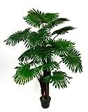 Seidenblumen Roß Fächerpalme Real Touch 140cm ZJ künstliche Pflanzen Palmen Palme Kunstpalmen...