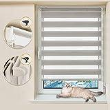Atlaz Doppelrollo Klemmfix Duo Rollo ohne Bohren Grau 50 x 100 cm Kettenzugrollo Sichtschutz für Fenster und Türen