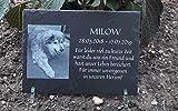 Tier-Gedenktafel Schiefer, drei Größen - Andenken an Hund, Katze, Pferd und andere Haustiere oder...