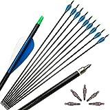 ZSHJG 12pcs Fiberglaspfeile 30 Zoll Bogenpfeile für Bogenschießen Spine 500 Bogen und Pfeile Pfeil...