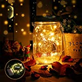 DazSpirit Solar Jar Light mit extra batteriebetriebenem LED String Light - Hängende Solarlaternen...