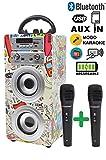 DYNASONIC - Tragbarer Bluetooth-Karaoke-Lautsprecher mit 2 Mikrofonen, USB- und SD-Lesegerät,...