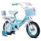 WQE Kinder Fahrrad Kinderfahrrad Prinzessin Fahrrad Kinderfahrrad 12/14/16 Zoll mit Stabilisator und...