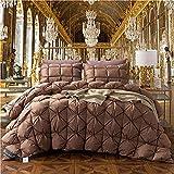 Cactuso bettdecke 220 x 240 cm 4 Jahreszeiten,100% Ganzing Down Duvet Solide Luxus Gesteppte Quilt King König Königin in voller Größe Duvet Winter Dicker Duvet-150x200cm 2.5kg_C