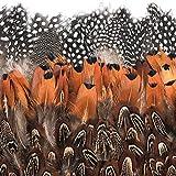 BAKHK 350 Stück braun Federn Indianer Federn basteln 5-8cm zum Basteln für Köstum, Hüte, Dreamcatcher oder Karneval Dekoration