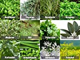 Mischung/Mix/Set'Kräutergarten/Küchenkräuter' 12 x Samen der beliebtesten Kräuter aus Portugal /...