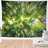 haoziggdeshoop Wandteppich Wandbehänge Bambuswald Tapisserie Wandtuch Hausdeko Strandtuch...