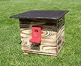 Garten und Holztrends Hummelhaus (H1) Hummelkasten, Hummelhotel, Hummelpenzion mit Wachsenmottesperre, Insektenhotel, Bienenhaus,Insektenhaus,Bienen