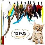 LlorenteRM Katzenspielzeug, interaktives Feder-Teaser mit 2 Stangen, 10 Befestigungen, Wurmvögel,...