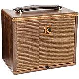 Kinsman KAA25 Akustik-Verstärker mit Chorus 25W Combo
