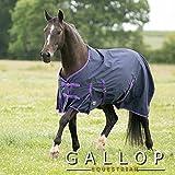 Gallop Pferde-Outdoordecke Keine Füllung 0g Kein Hals, EU 110cm